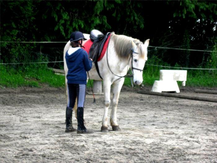 Cours d'équitation → Kermat ♥ - Page 2 Prip_812