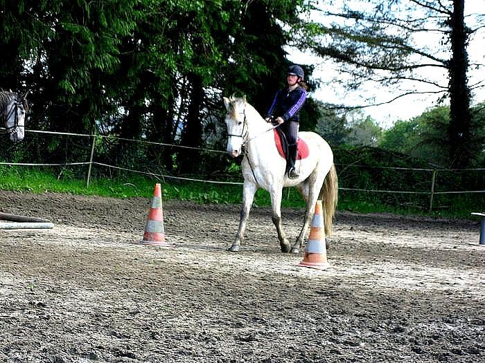 Cours d'équitation → Kermat ♥ - Page 2 Prip_815