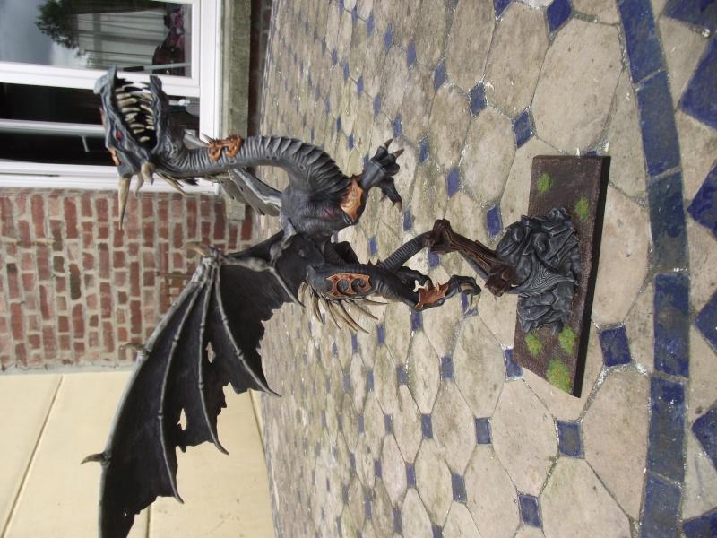 Le dragon de la semaine Dscf0912