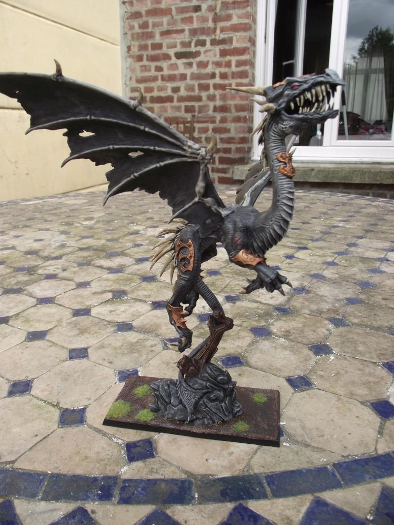 Le dragon de la semaine Dscf0916