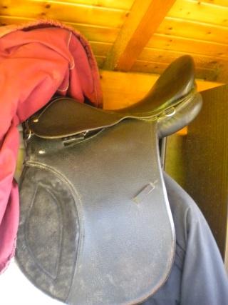 selle 1er prix, filet, protections, couverture 125cm, chaps cuir taille L, cloches... Dscn4114