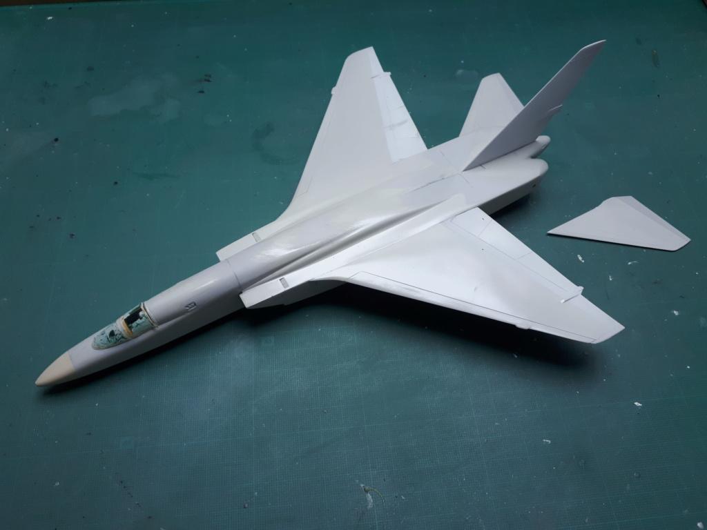 [HASEGAWA] RA-5C VIGILANTE reprise après un long séjour dans un tiroir!!! 20200935