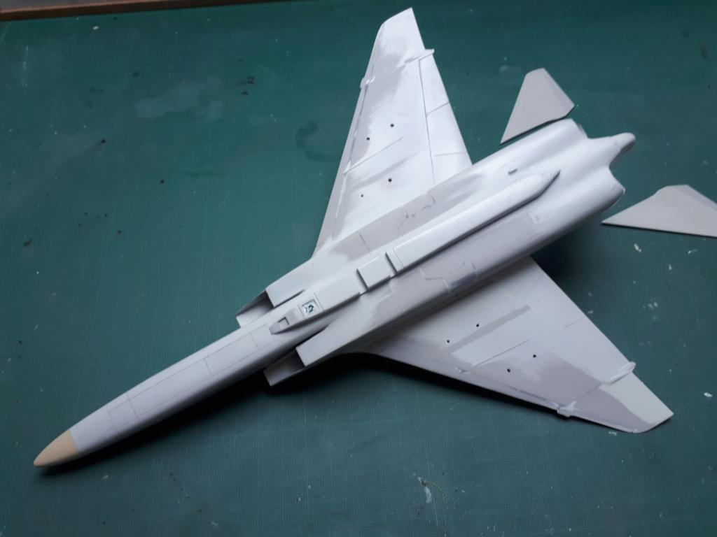 [HASEGAWA] RA-5C VIGILANTE reprise après un long séjour dans un tiroir!!! 20200936