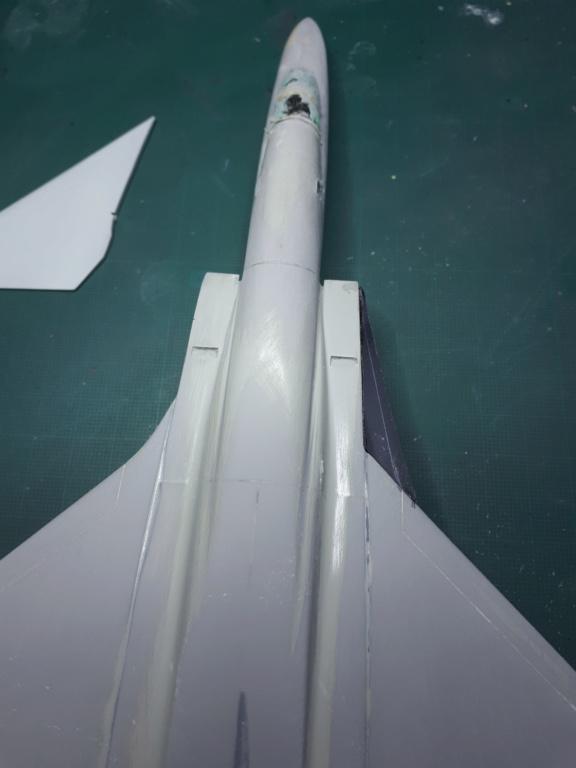 [HASEGAWA] RA-5C VIGILANTE reprise après un long séjour dans un tiroir!!! 20200938