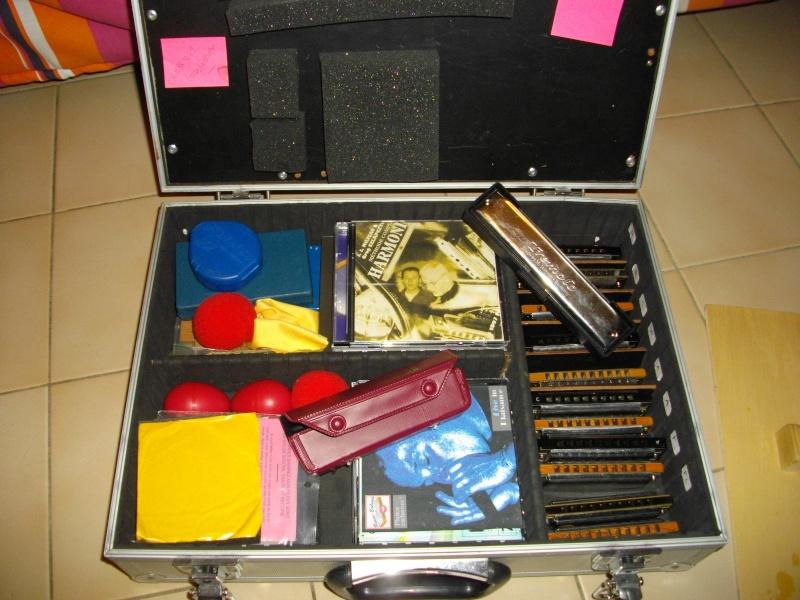 harmonica diatonique  Imgp3311