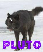 Pluto BIO! 5-1110