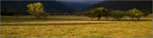 La Grande Plaine