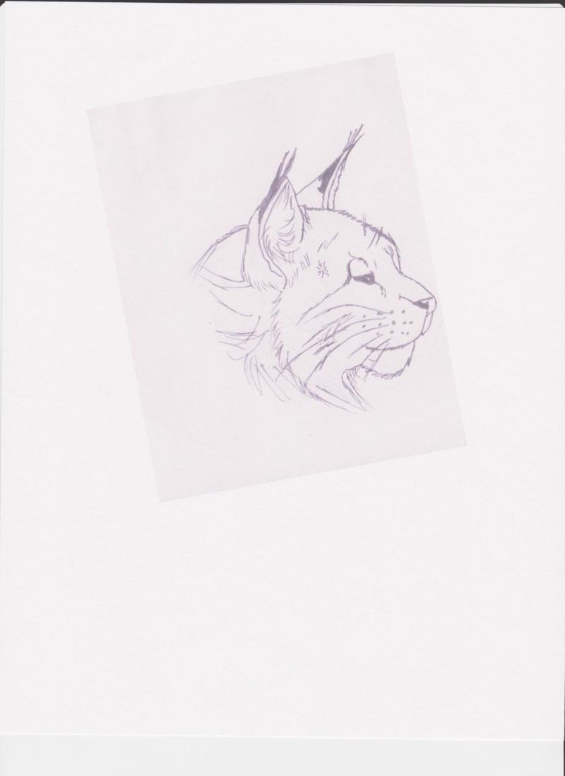 Behold! My drawing skills! Image_10