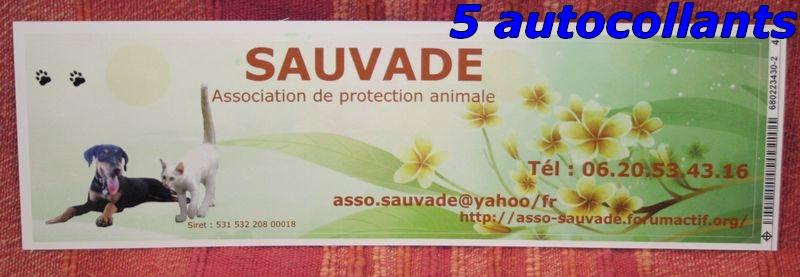 VENTES SAUVADE 2012 Autoco11