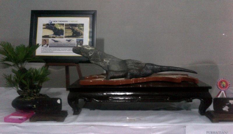 """""""Komodo"""" Suiseki (New 7 Wonders of Nature) Kudus-10"""
