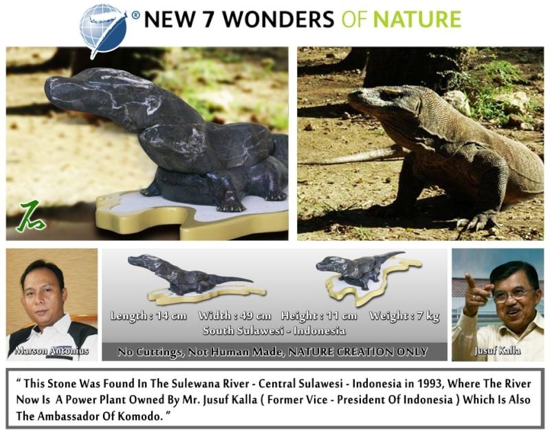 """""""Komodo"""" Suiseki (New 7 Wonders of Nature) Suisek10"""