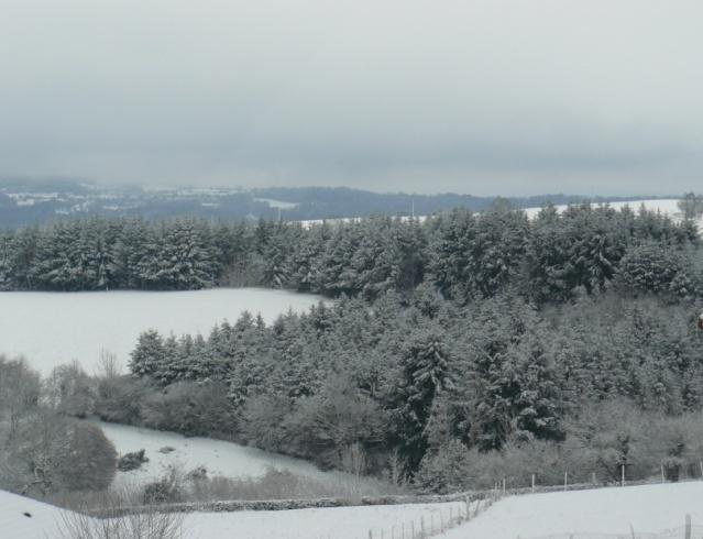 vos ambiances hivernales !!! c'est parti !! Snow_110
