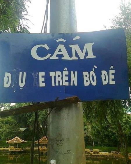 Cười đau bụng với những hình ảnh chỉ có tại ..Việt Nam 13513014