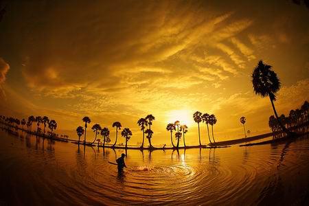 Những khoảnh khắc tuyệt đẹp trên đất Việt 13540611
