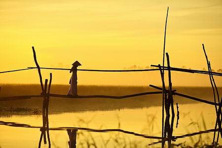 Những khoảnh khắc tuyệt đẹp trên đất Việt 13540613