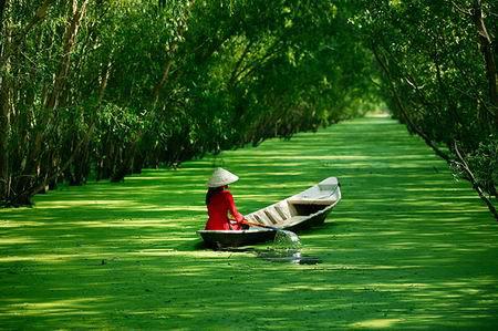 Những khoảnh khắc tuyệt đẹp trên đất Việt 13540615