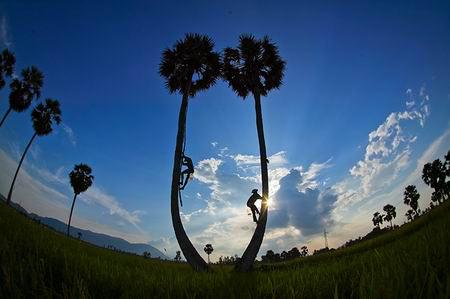 Những khoảnh khắc tuyệt đẹp trên đất Việt 13540616