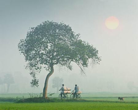 Những khoảnh khắc tuyệt đẹp trên đất Việt 13540619