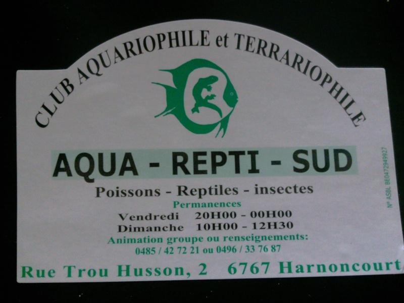 AQUA-REPTI-SUD (club aquariophile et terrariophile a harnonc Photo011