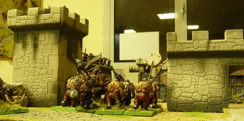 Warhammer Fantasy, Galerie de Batailles P1170036