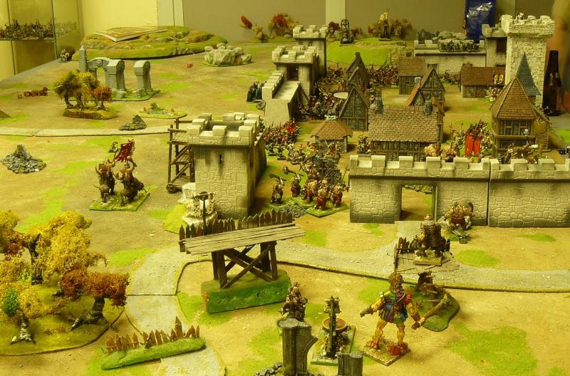 Warhammer Fantasy, Galerie de Batailles P1170041