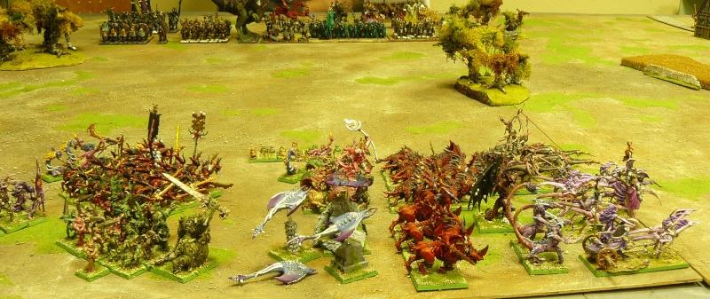 Warhammer Fantasy, Galerie de Batailles P1170348