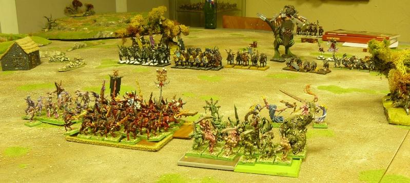 Warhammer Fantasy, Galerie de Batailles P1170352
