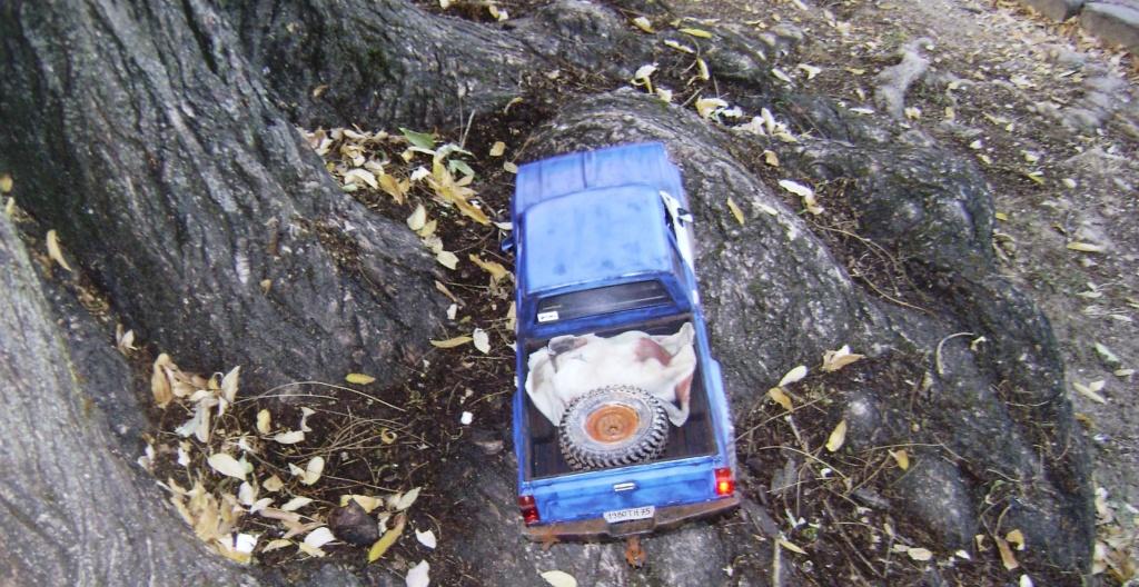 Les Toyota Hilux 2 & 4 portes RC4WD Trail Finder 2 RTR de Trankilou &Trankilette - Page 6 Dsc09647