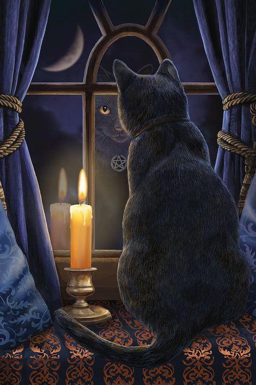 bonzour bonne zournée et bonne nuit notre ti nid za nous - Page 40 1d655e10
