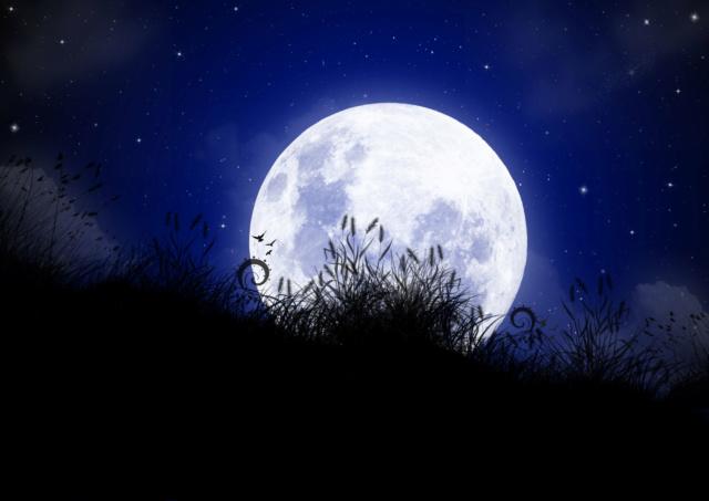 bonzour bonne zournée et bonne nuit notre ti nid za nous - Page 39 Img_8520