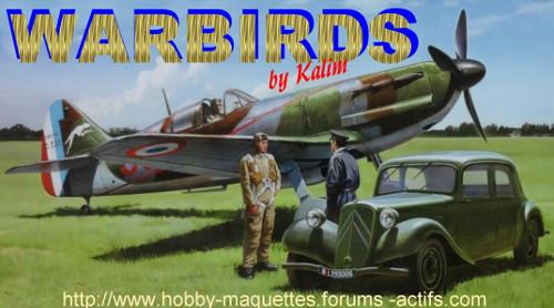WARBIRDS ,le plaisir de maquetter.........