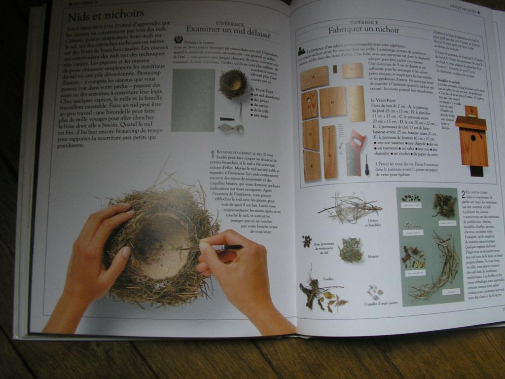 DIY pour les petits P1010046