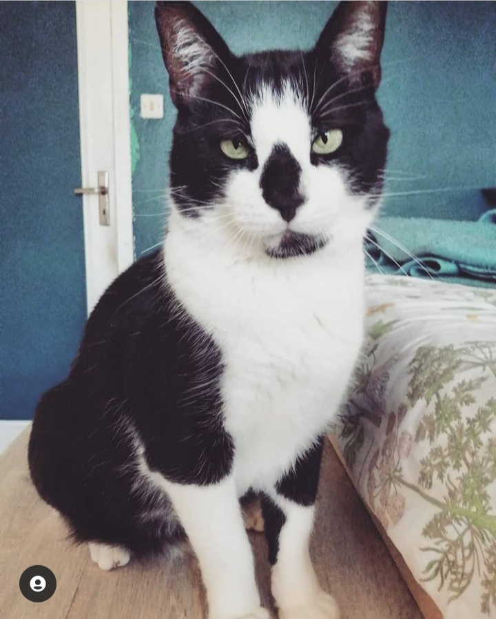 WELBY FIV+ 20210122