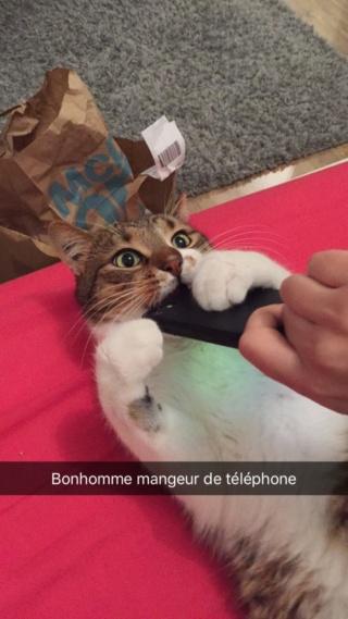 BONHOMME Img_0710