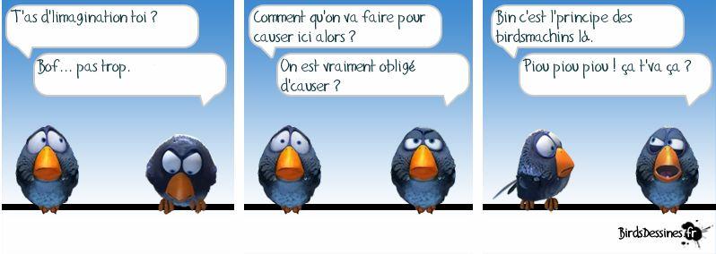 C'est la rentrééééééééé  !!!  - Page 3 Birds_11