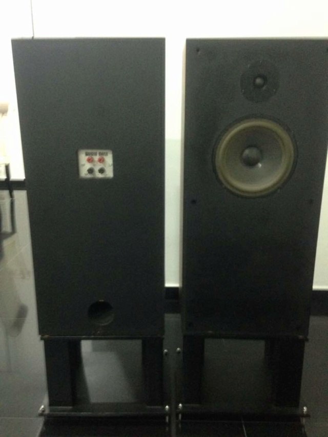 Audio Note Speakers AN-E/ SPX Img-2045