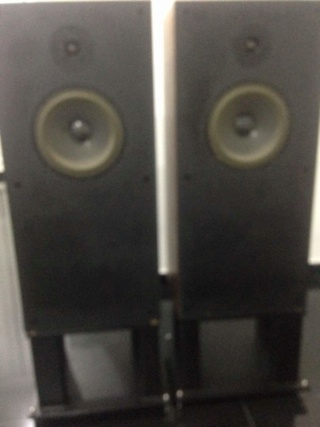 Audio Note Speakers AN-E/ SPX Img-2050