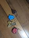 photos de l ' échange - Page 2 Img_2012