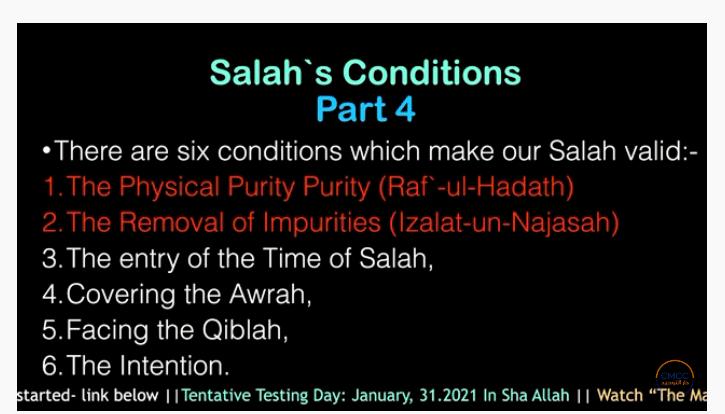 Pray the Prophet`s (Sallallahu Alayhi wa Sallam) Way 11-110