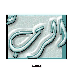 Gems Of The Heart - Shaikh Ibrahim Zidan - Page 2 4111