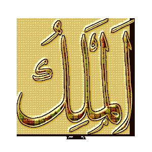 Gems Of The Heart - Shaikh Ibrahim Zidan - Page 3 6911