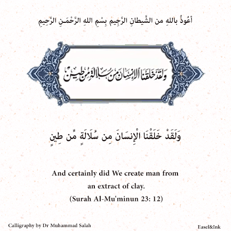 Qur'anic Reflections - Dr Muhammad Salah S23a1210