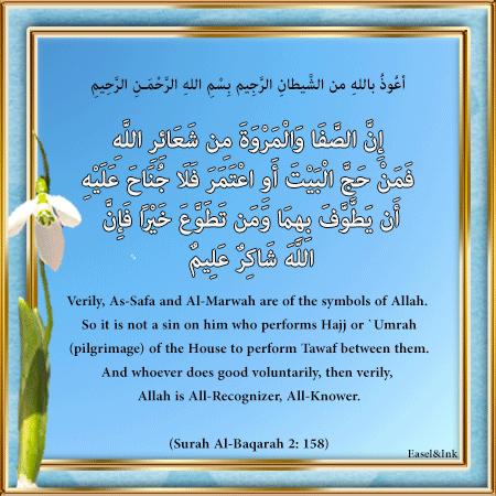 Gems Of The Heart - Shaikh Ibrahim Zidan - Page 3 S2a15810