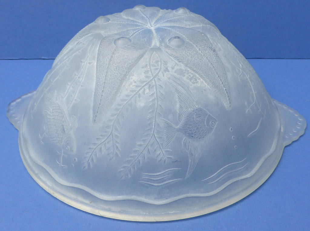 Fish Bowl P1660210