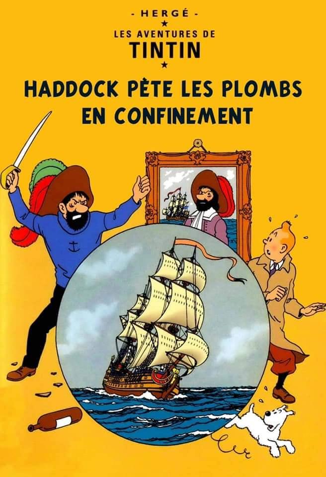 Bande dessinée - Page 3 Haddoc12