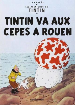 Bande dessinée Tintin12