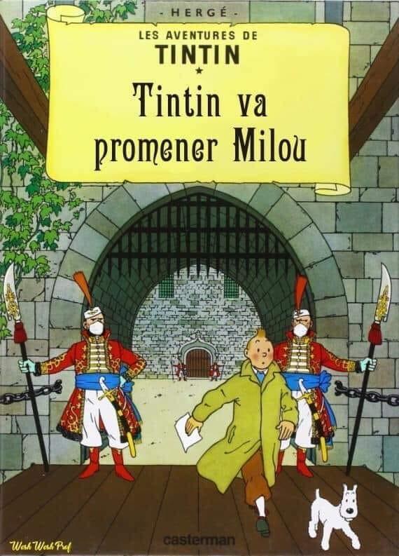 Bande dessinée - Page 2 Tintin17