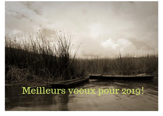 Cartes de vœux 2018/2019 I_m_ro10