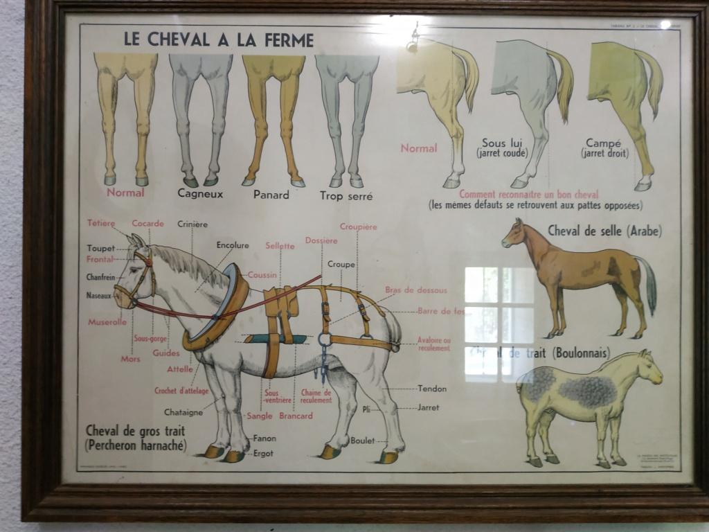 Musée 1900 à Uzès (Gard) - Page 3 Musee202