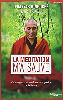 méditation - La méditation m'a sauvé - Tu enseigneras au monde comment guérir 51gqio11